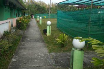 Orchid Nursery9